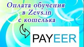 Оплата обучения в Zevs in с кошелька пеер 2017 год