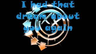 Blink 182- Roller coaster lyrics