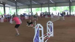 Indian River Dog Training Club Trial 5-09