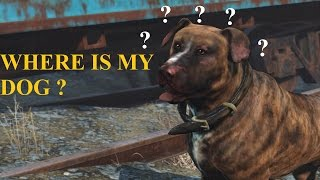 Can't Find your dog ? Fallout 4