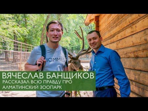 Вячеслав Банщиков рассказал всю правду про алматинский зоопарк