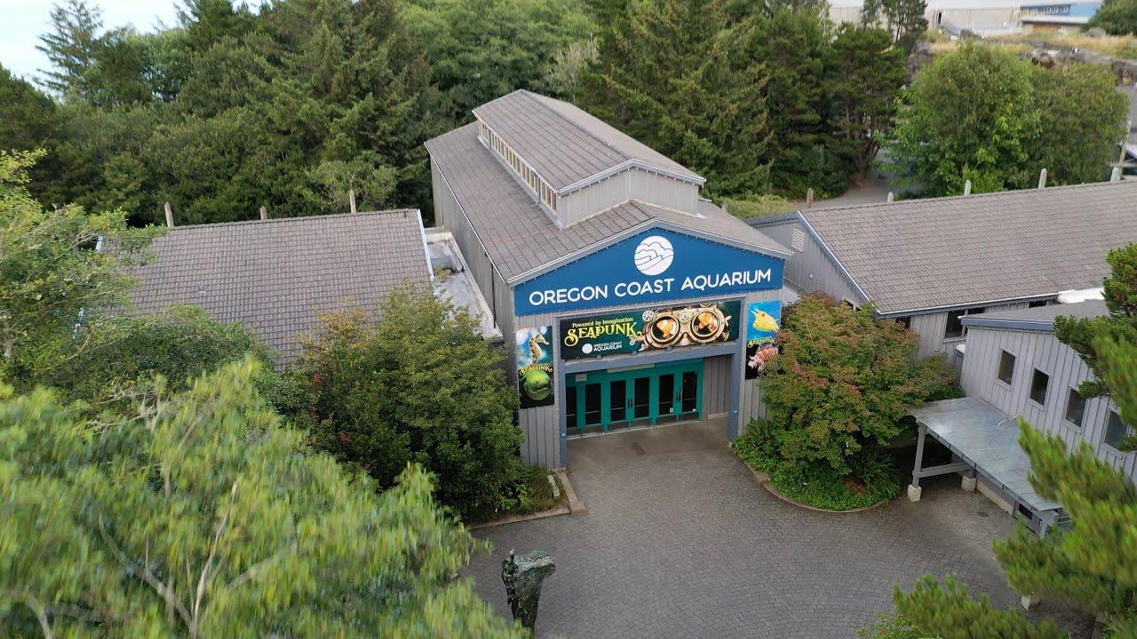 Oregon Coast Aquarium Receives $5-million Grant