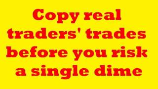 Currency Trading For Dummies and Cheats! Easy, Peasy Forex Trading!