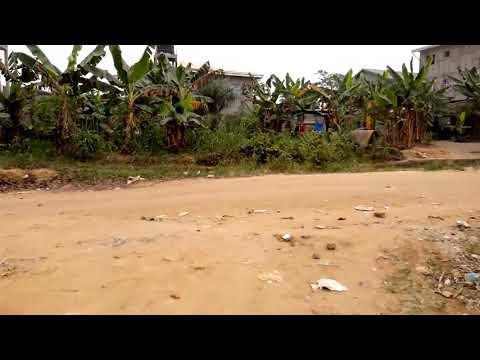 500 m² à vendre à Douala (Logbessou)