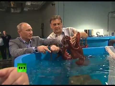 Putin visits an oceanarium on Russia's far east island