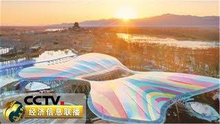 《经济信息联播》 20190429| CCTV财经