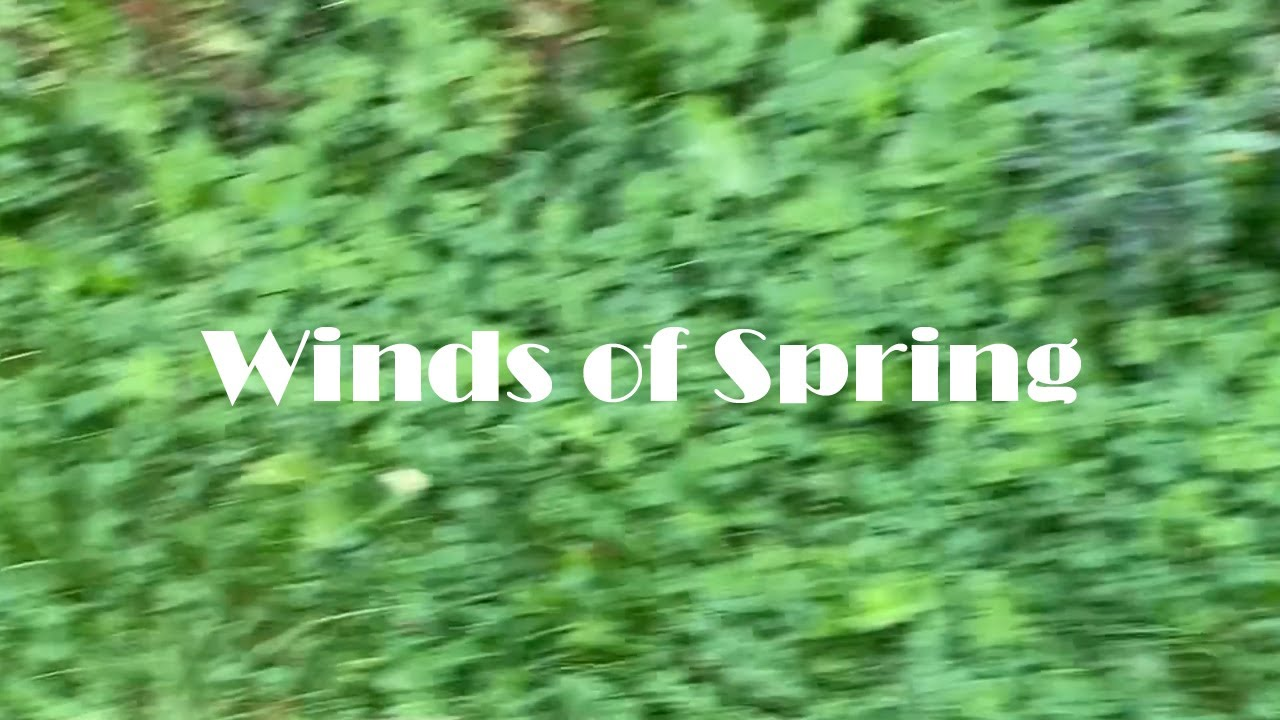 Winds of Spring - Nature Relaxing 4K