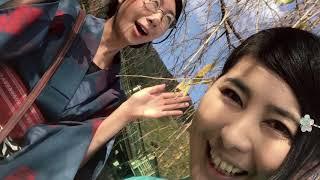 京都きものTV 11月号「着物で遠足!嵐山トロッコ列車」