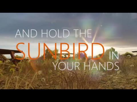 (Kinetic Typography) Sunbird - Michael Holborn & William Henries