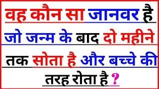 Gk के 25 सवाल | interesting Gk | general knowledge | Gk questions in Hindi | interesting Gk in Hindi
