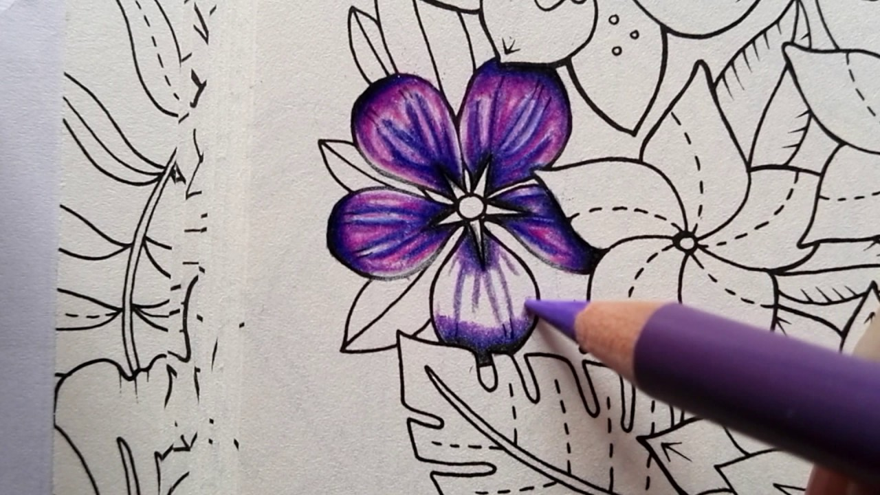 How To Color A Flower Magical Jungle By Johanna Basford