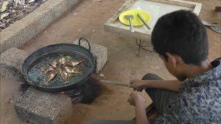 Village food factory Ayila MEEN Roast Cooking by my Family in my village Ayila MEEN FRY