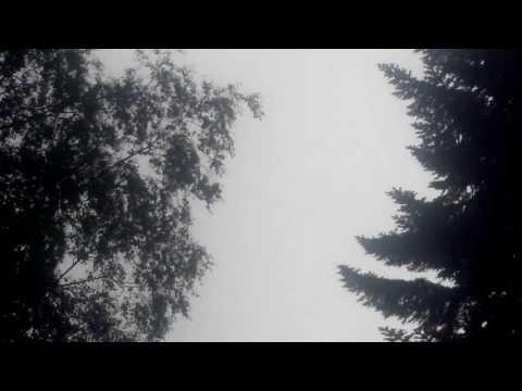 Lykke Li - Time Flies (+Lyrics)