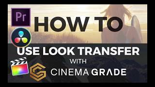 How to use look transfer with Cinema Grade | Plugin for FCPX, Adobe Premier, Davinci Resolve