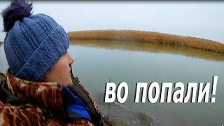 Рыбалка январь. Открытие сезона 2018. ВО ПОПАЛИ!