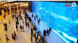 Dubai Mall World 's Largest Shopping Mall 2019 Hd