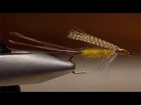Stonefly Creeper