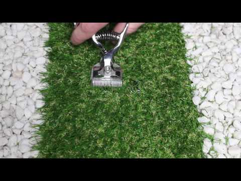 ASMR Tascam Grass Cutting with Hair Clippers. (No Talking)
