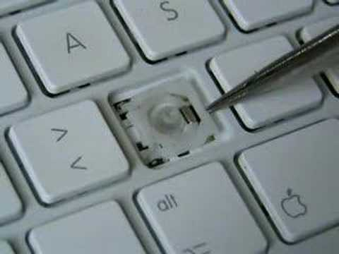 Cut, copy, paste, and other common shortcuts