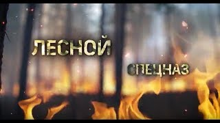 короткометражный документальный фильм о работе лесных пожарных