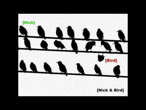 Nick and Bird (Nickwyrmfang) - Two Fly Guys (Nick and Bird Theme Song Beat) - Raisi K.