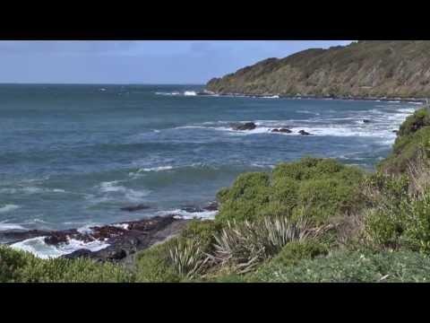 New Zealand South Island Rail Tour