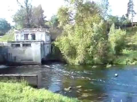 видео: Сиверская плотина на реке Оредеж