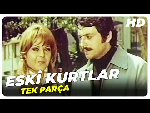 Eski Kurtlar - Türk Filmi