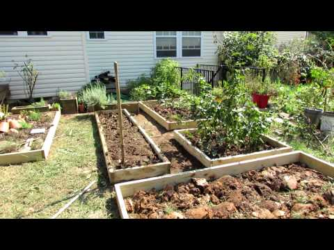 Vegetable Garden Design vegetables including corn thrive in this raised garden bed Designing A Raised Bed Vegetable Garden A Fall Makeover Youtube