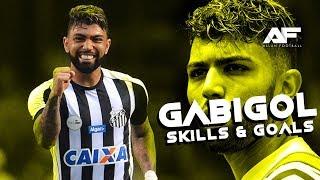 Gabriel Barbosa 2018 • Santos • Skills & Goals • HD