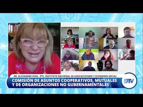El titular de INAES brindó un informe sobre la actividad cooperativa ante diputados