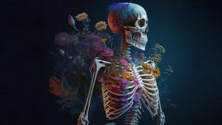 Terror Haus Tervoort Moers | HLP