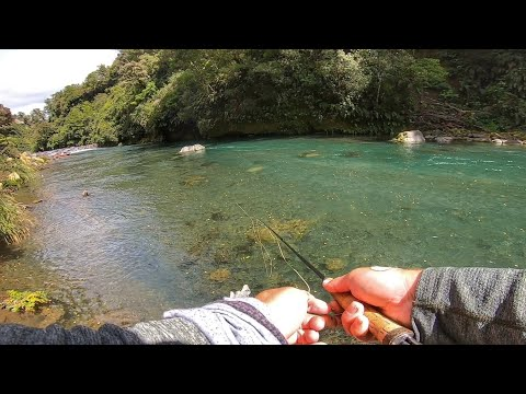 Big  Brown Trout And Raft Fishing [New Zealand]
