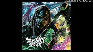 Incinerated Flesh – Murder on Acid