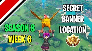 Fortnite Season 8 Week 6 Secret Banner / Battle Star Location (Discovery Challenges)
