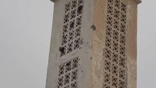 مسجد إدريس غريب في التحيتا شاهد آخر على جرائم مليشيات الحوثي الإرهابية