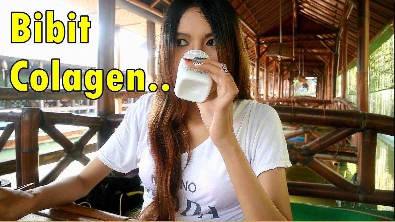 Bibit Collagen Kulit Putih Dalam 7 Hari Youtube Colagen Pemutih