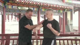 Knockout technique from Five Thunder Dim Mak Distance Learning Programme