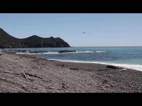 East Coast Trip New Zealand Part 1