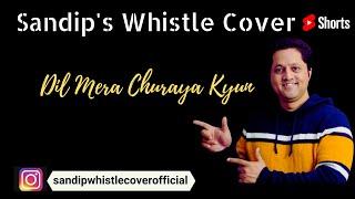 "Whistle Cover ""Dil Mera Churaya Kyun"""