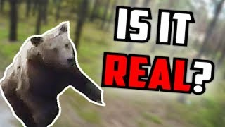 IS IT REAL? - Man Running From Bear In Woods (Real or Fake)