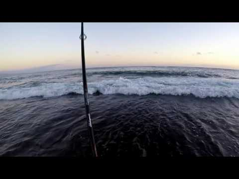 Mark White Lure north shore Maui