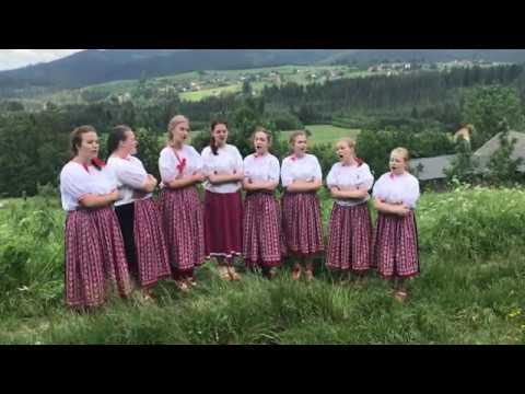 Jetelinka - grupa