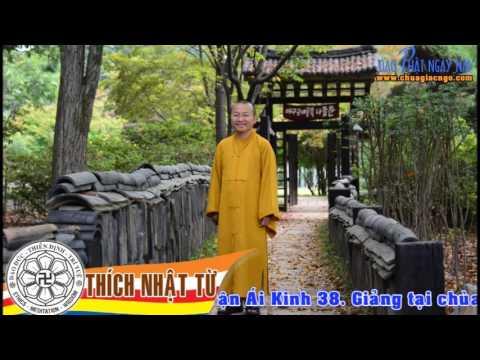 Kinh Trung Bộ 38 (Đại Kinh Đoạn Tận Ái) - Nghệ thuật chặt đứt mắc xích khổ đau (09/04/2006)