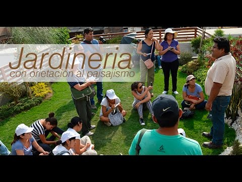 Curso de jardiner a youtube for Aprender jardineria