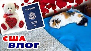 Шоппинг ко Дню Влюбленных с детьми Сделали операцию Коте Как получить паспорт в США Вакцинация