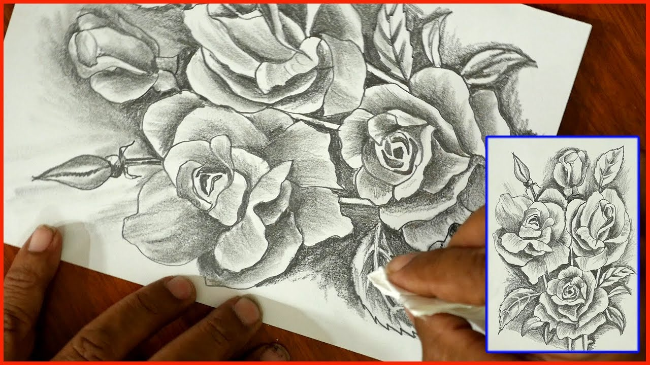 Easy to Draw Roses- step by step-DIY Art-Pencil sketch ...