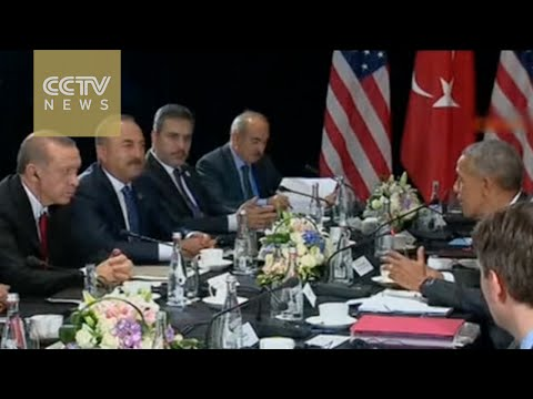Turkey, US to work together on driving ISIL from Syria's Raqqa