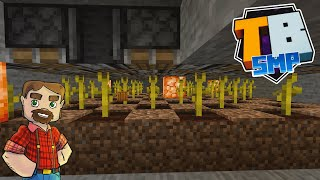 Melon and Pumpkin Farming! - Truly Bedrock SMP Season 2! - Episode 20