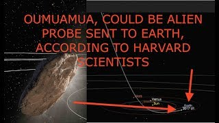 Harvard Scientists Say Interstellar Asteroid, Oumuamua Could Be Alien Probe, Latest